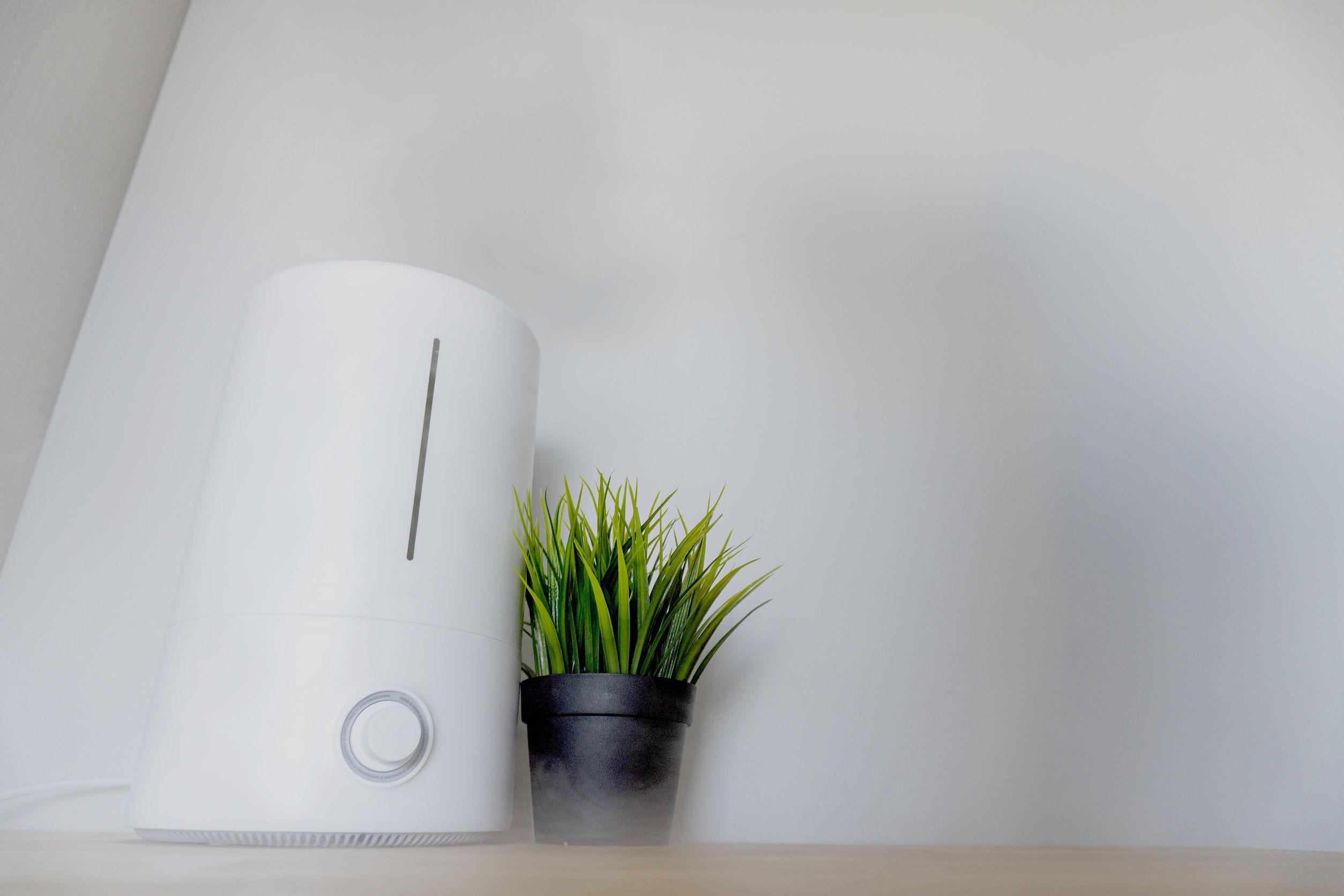Generador de ozono: ¿Cuál es el mejor de 2020?