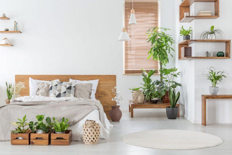Una habitación decorada y una ventana con persiana