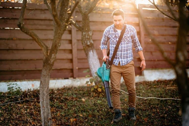 Hombre con soplador de hojas en su casa