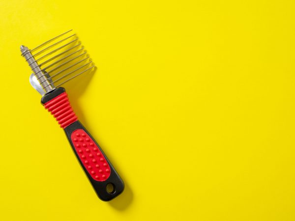 Close up professional comb grooming brush for dog on bright yellow background.