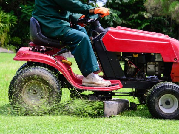 22159380 – lawn mowing service