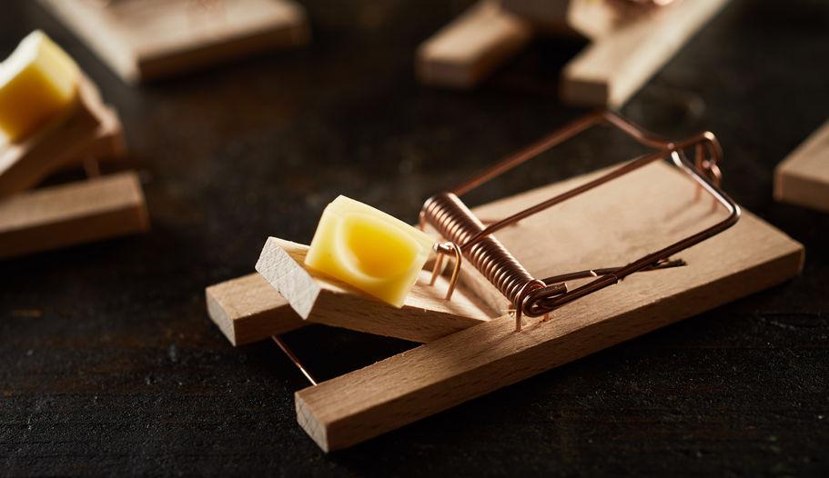 trampa de ratones con queso