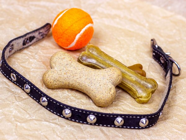 Brown biscuit bones for dogs with bright orange ball and black collar on light background.