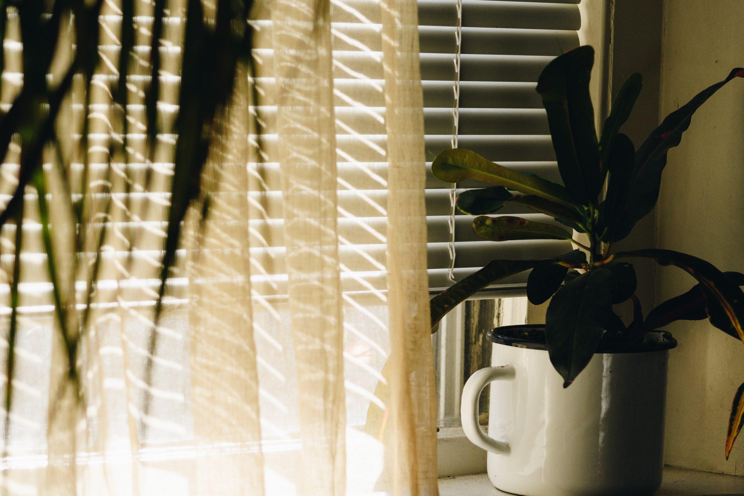 persianas de casa