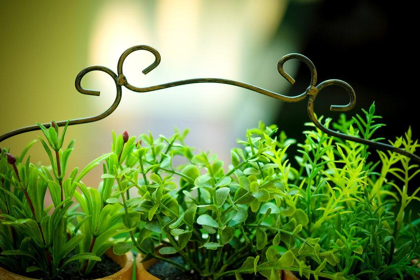 Plantas artificiales en el jardín