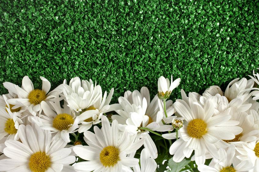 Plantas artificiales con flores