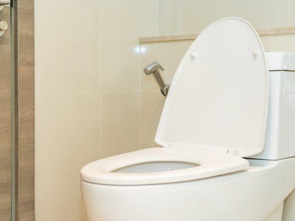 Toilet seat bowl in bathroom interior of room