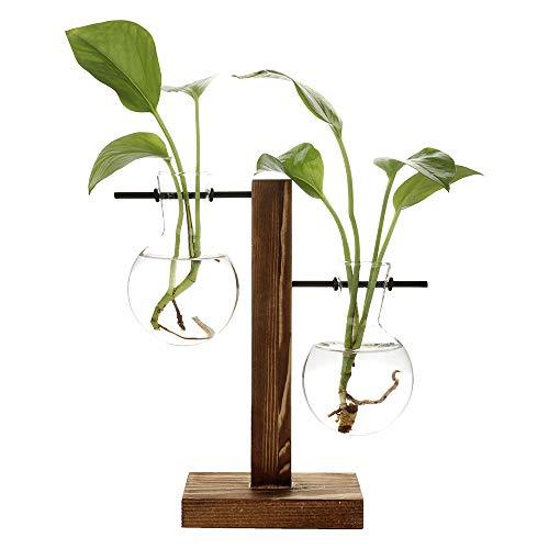 belupai Floreros hidropónicos vintage florero transparente marco de madera vidrio Tabletop Plants Home Bonsai Decor Envío gota (B - 2 bulbos floreros)